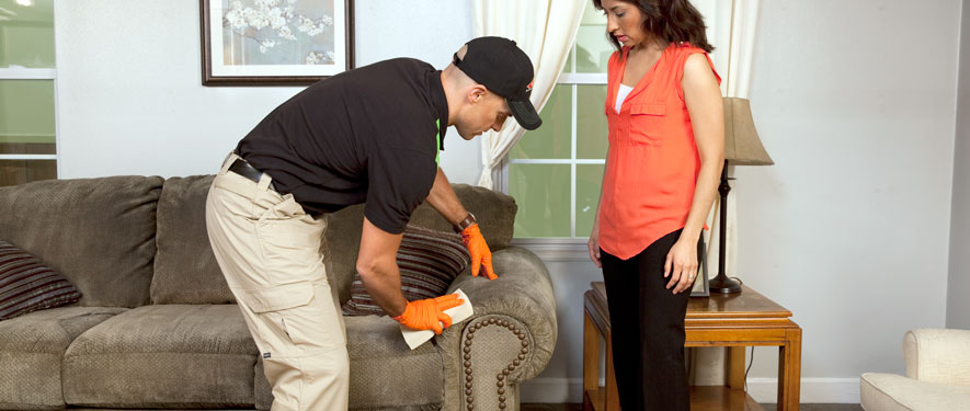 Monaca, PA carpet upholstery cleaning